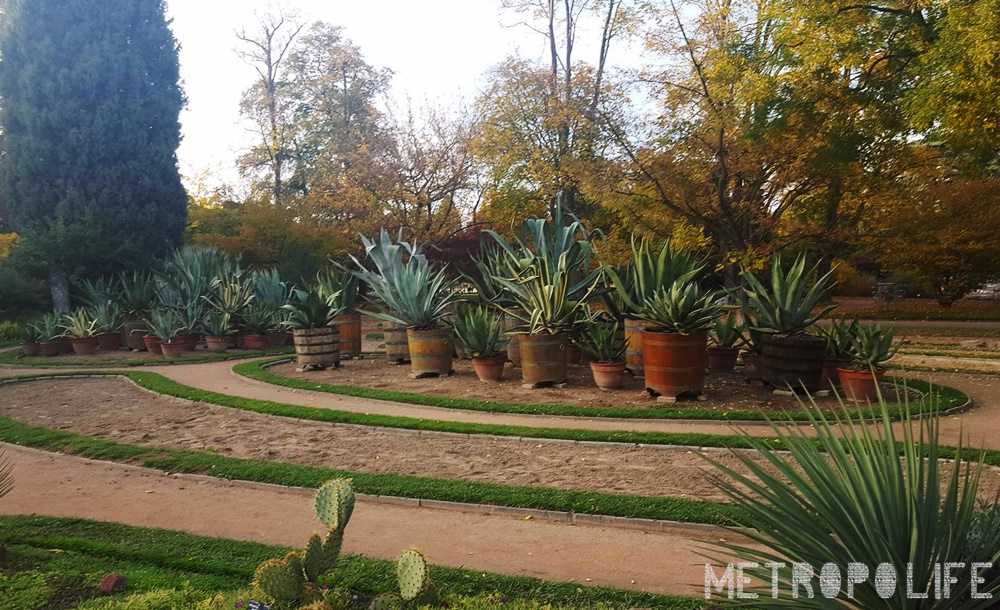 Botanical garden Parc de la Tête d'O